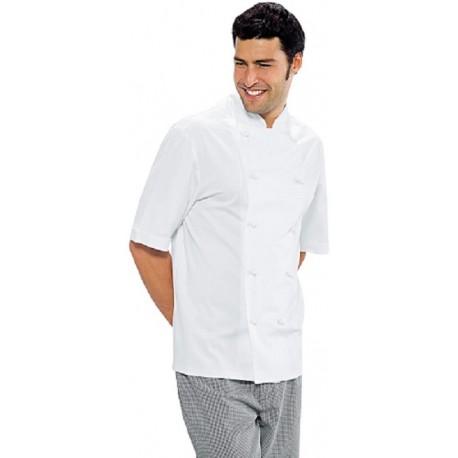 Giacca cuoco Enrica manica corta - Isacco