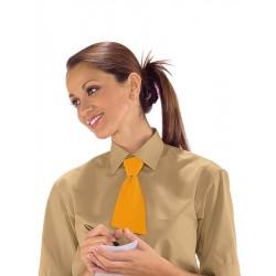 Cravattino da lavoro unisex in vari colori per bar - gelaterie - Isacco